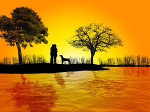 love-in-the-sunset-949398-m